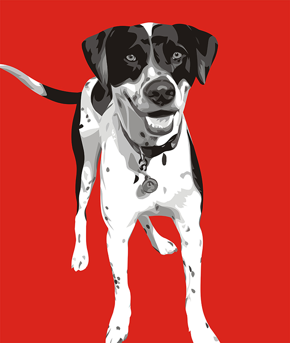 Excited Dog in Photo on Pop Art Canvas