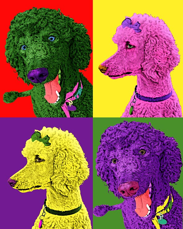dog pop art andy warhol