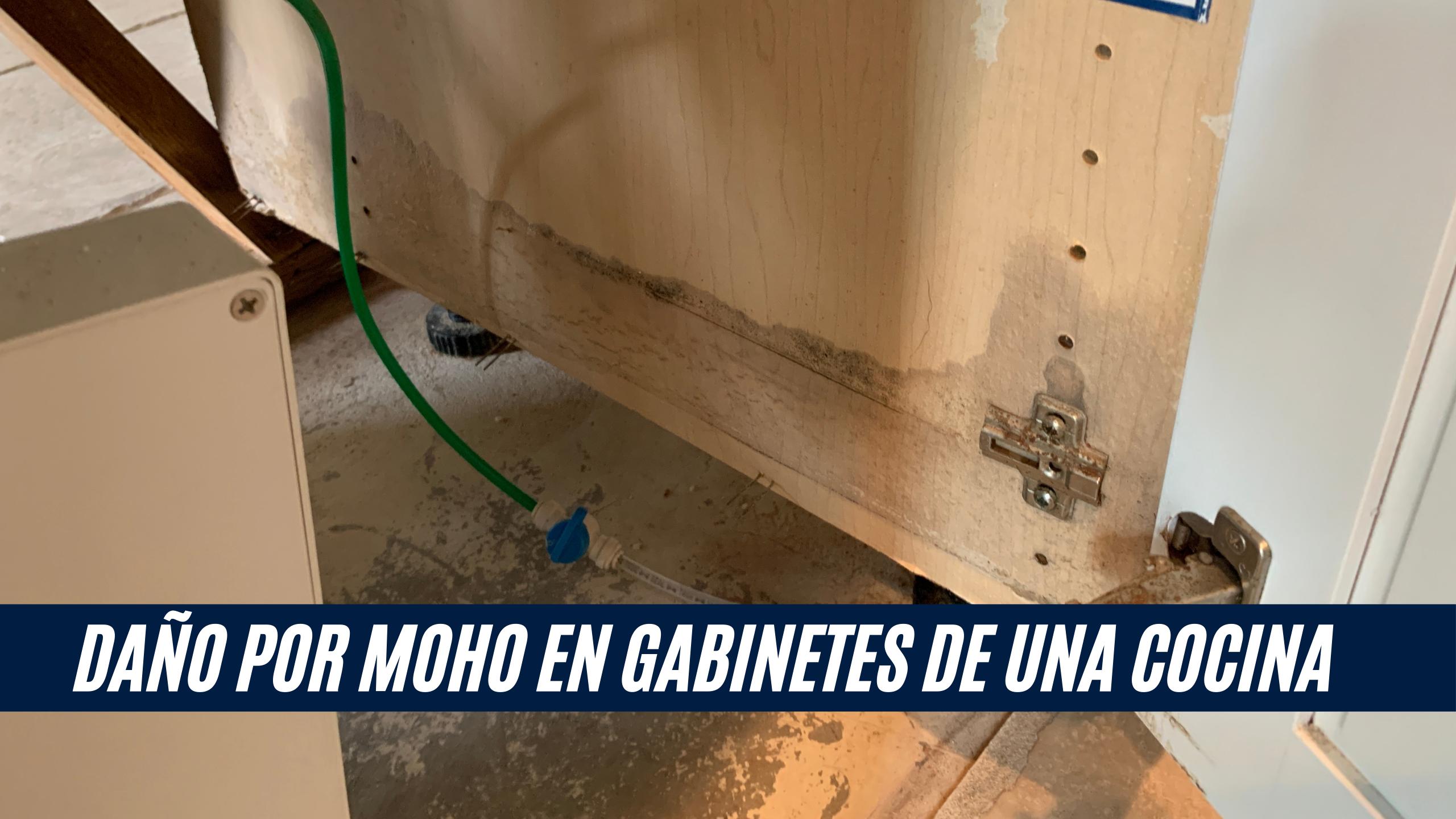 """La imagen muestra daño por moho en una puerta de gabinete de cocina, con una barra con el título """"Daño por moho en gabinetes de una cocina"""""""