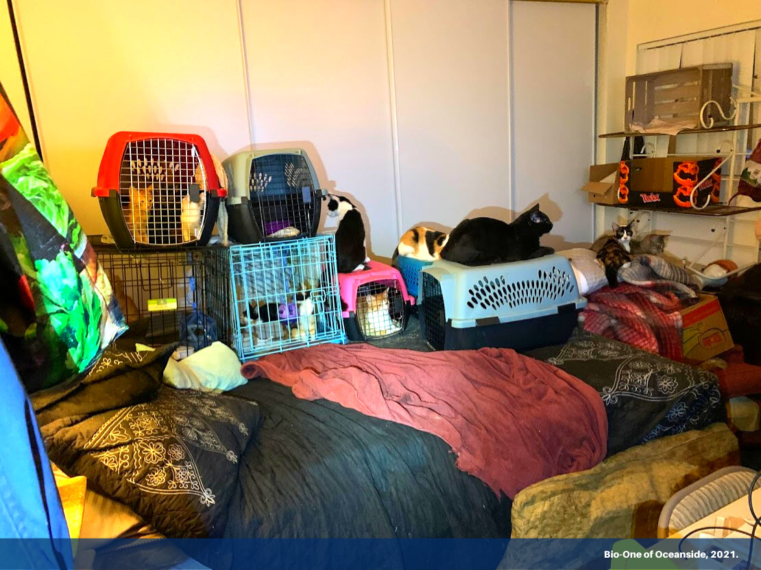 """Image shows a bedroom area with several cat kennels that make it impossible for anyone to lay on it. It has a banner on the bottom with text """"Bio-One of Oceanside, 2021."""""""
