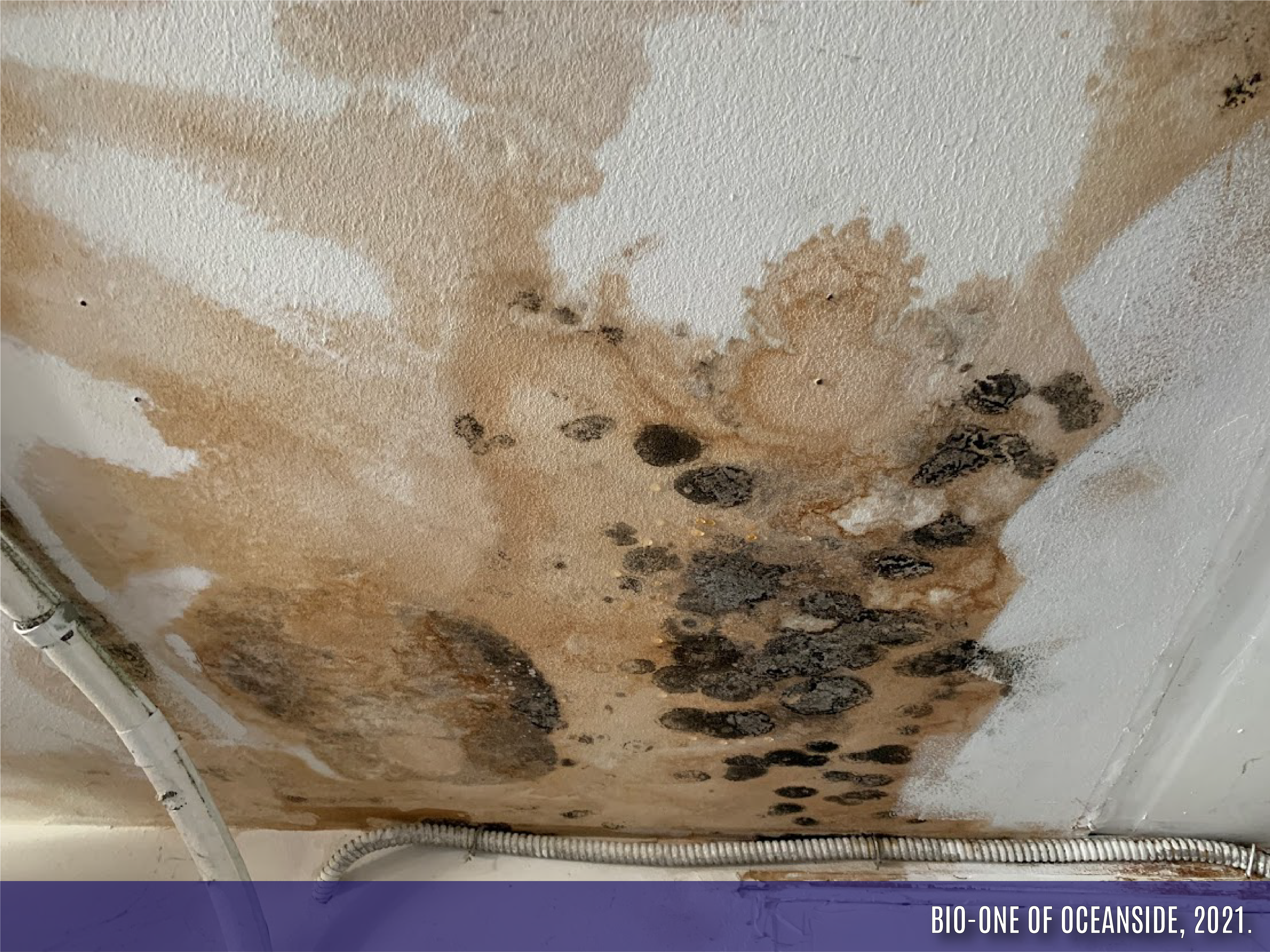 """Image shows a water leak issue that resulted in mold damage to a ceiling area. It has a banner on the bottom with our Company Name and year the photo was taken: """"Bio-One of Oceanside, 2021."""""""