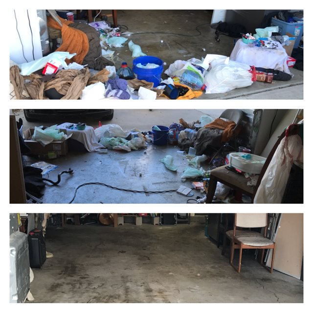 Rodents usually hide in garages and highly cluttered areas.