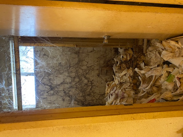 Image shows the entrance to a bathroom blocked by trash. The walls are covered with spider webs.