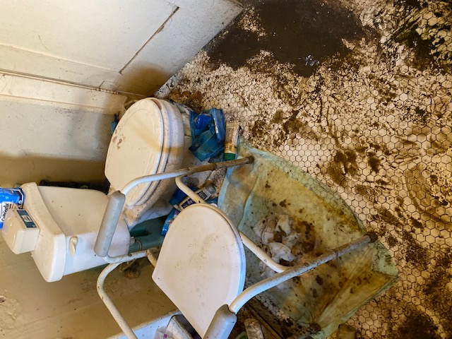 Bathroom with gross filth in floor area.