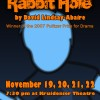 "Central College theatre presents ""Rabbit Hole"""