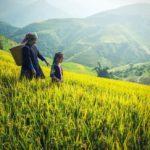 Smallholder farming proving to be backbone of economy in Nepal