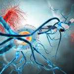 WHA73 endorses resolutions on meningitis control and epilepsy