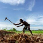 Digital Community Entrepreneurs making Technology Work for Ugandan Rural Farmers
