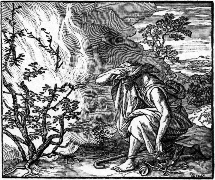 Moses sees a fire burning in a bush on Mount Horeb