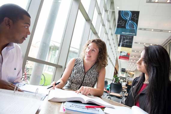 Furman professor meeting with students