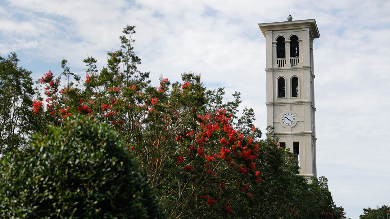 Furman Bell Tower behind blooming crape myrtles