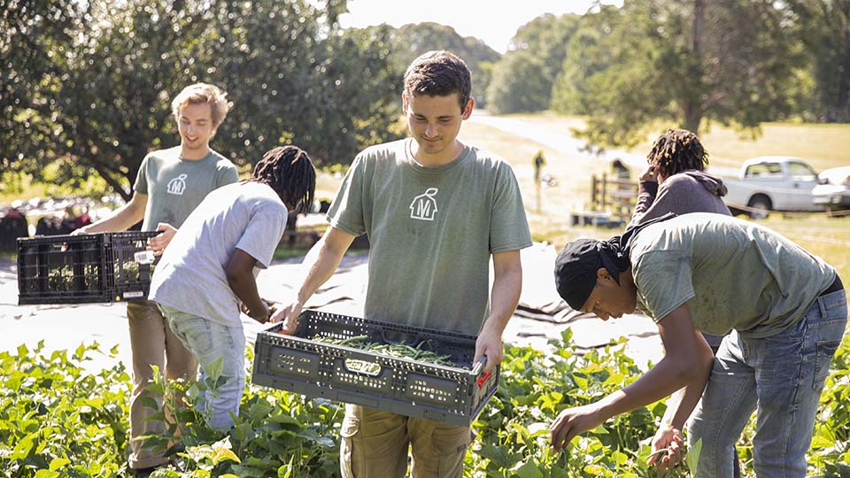 youth outdoors harvesting produce