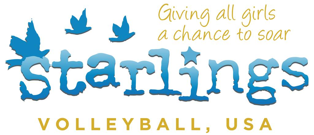Starlings Volleyball, USA Logo