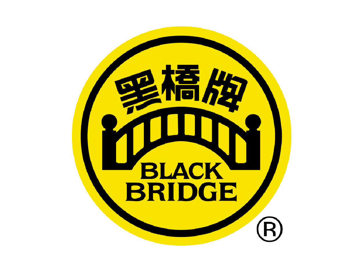 newsleopard-email-marketing-service-partner-blackbridge