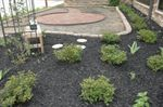 Local club provides strength, hope with healing garden at Southwest Virginia Cancer Center