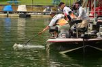 Carhartt Bassmaster College Series National Championship On Chatuge: Take Two