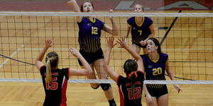 Volleyball video image