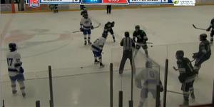 Ice Hockeyvideo image