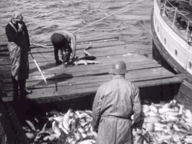 Alaska s silver millions 1936 image normal