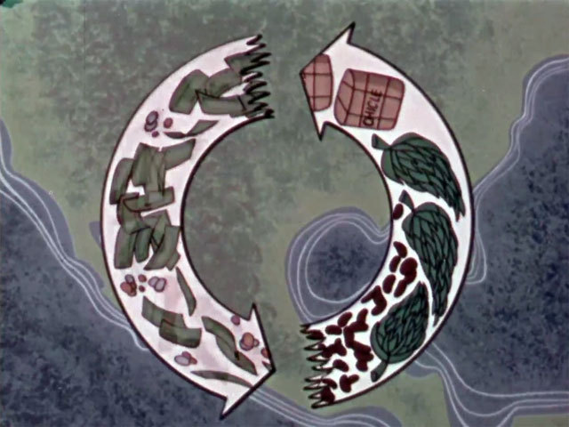 The living circle 1956 image normal