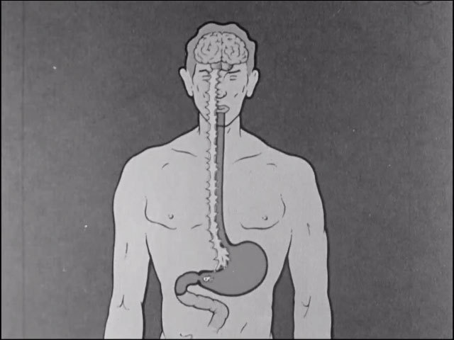 Ulcer at work 1959 image normal