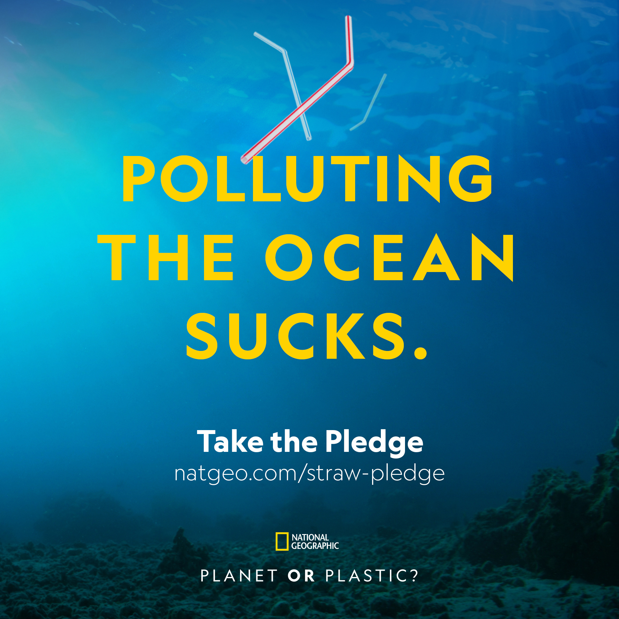 The plastic pollution problem affects us all  Take your pledge