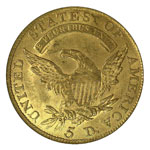 Capped Bust $5 - Capped Bust Half Eagle - Capped Bust Five Dollar