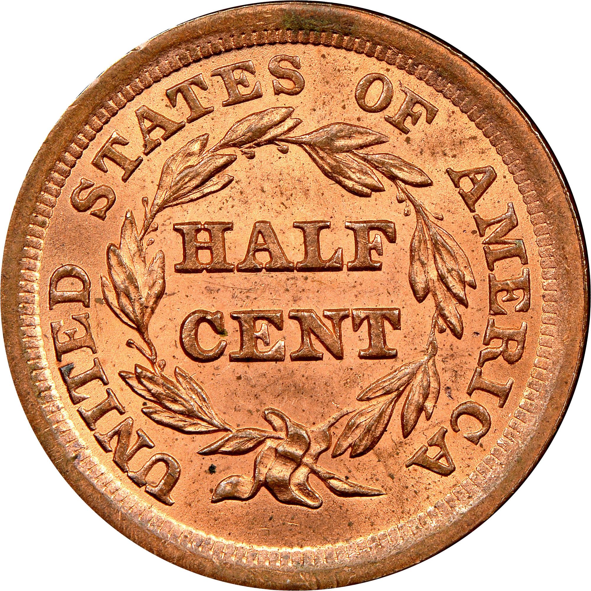 1855 C 1 12c Ms Braided Hair Half Cents Ngc