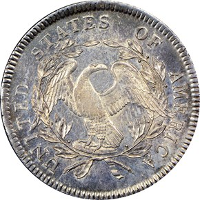 1795 FLOWING HAIR $1 MS reverse