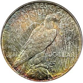 1923 D $1 MS reverse
