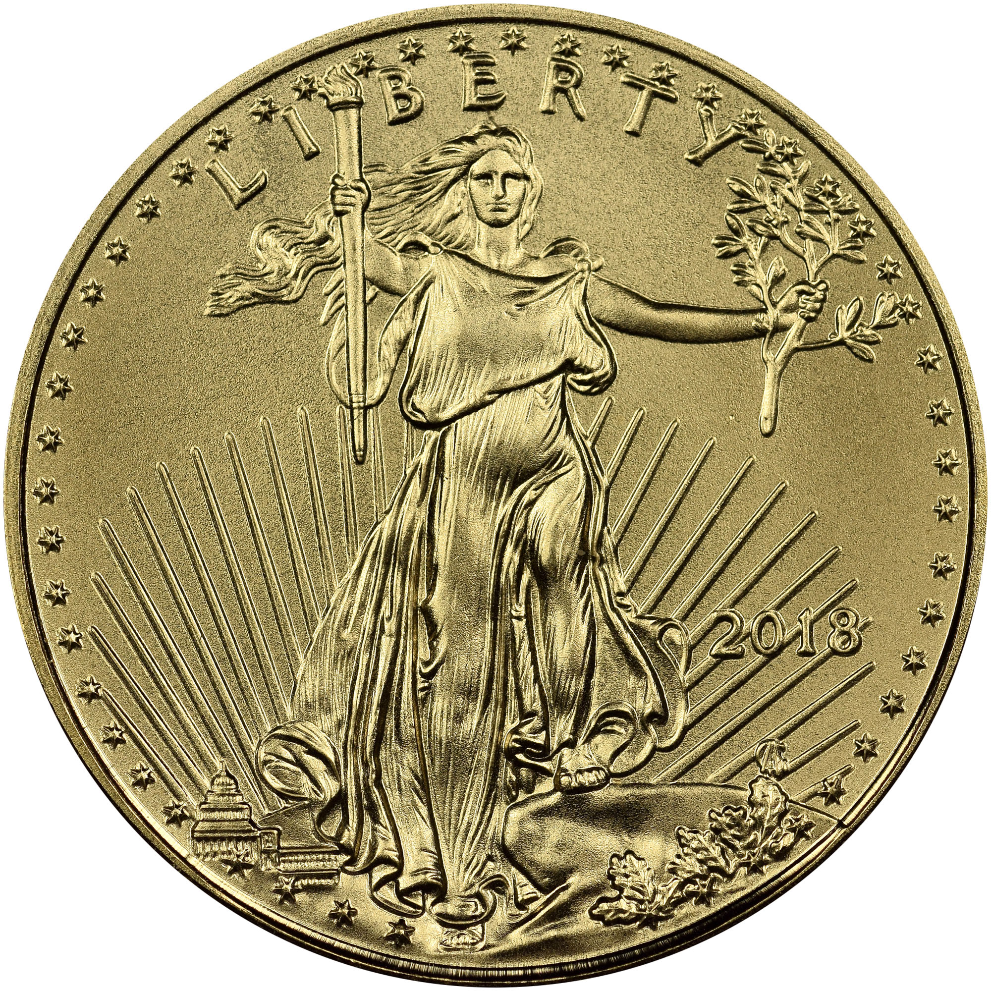 2018 Tenth Ounce $5 Gold Eagle NGC MS70 First Issue Mike Castle Slab ET2564A//RNQ