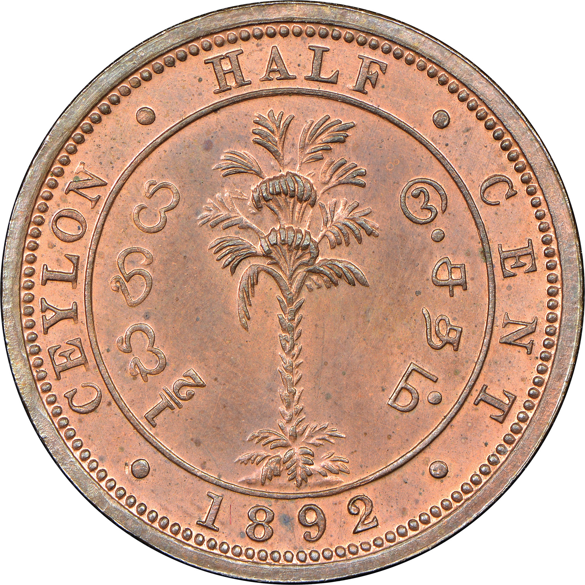 1870-1901 Ceylon 1/2 Cent reverse