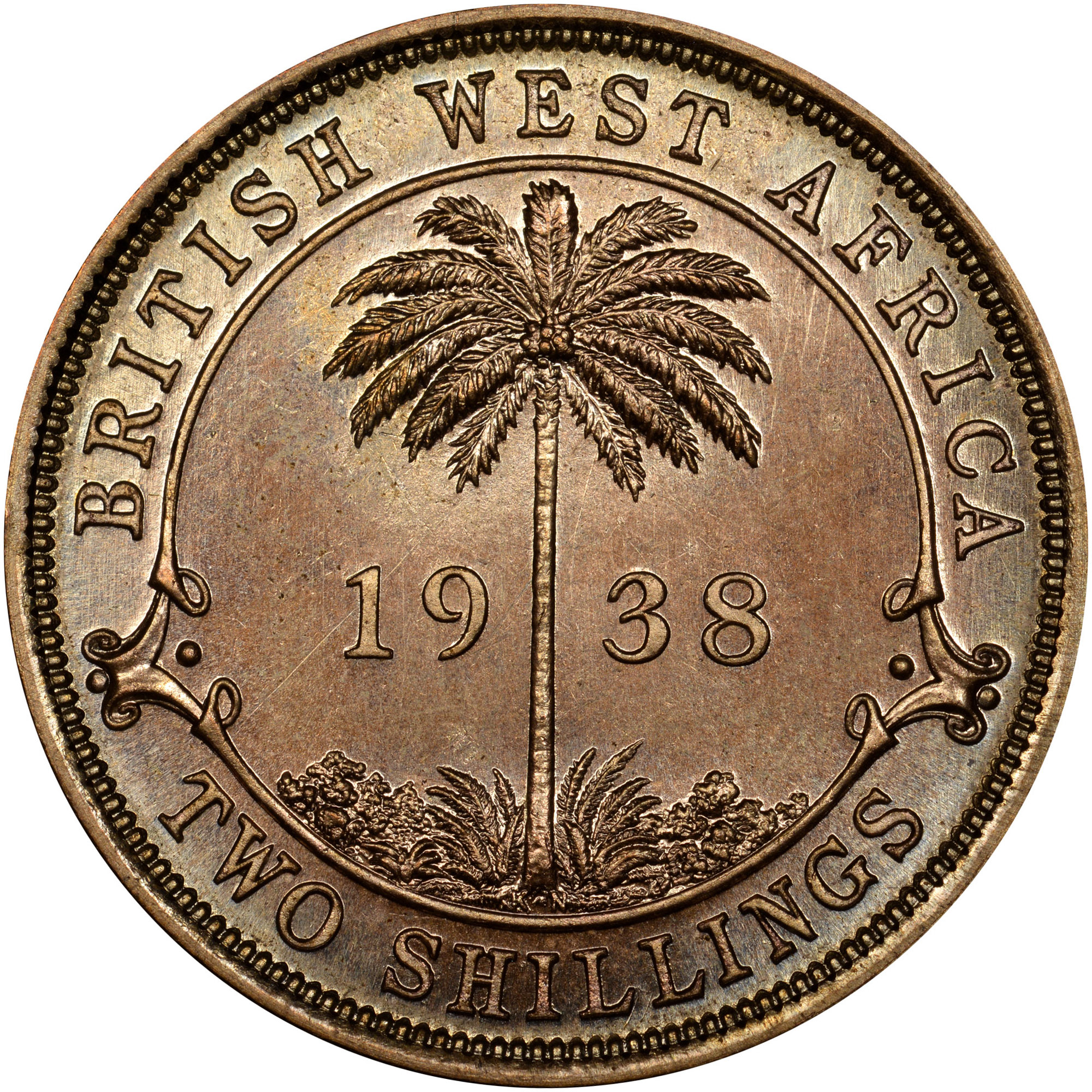 British West Africa 2 Shillings reverse