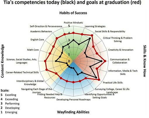 "MyWays ""spider-graph"" chart of competencies"