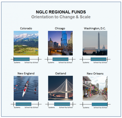 NGLC regionals' change & scale strategy