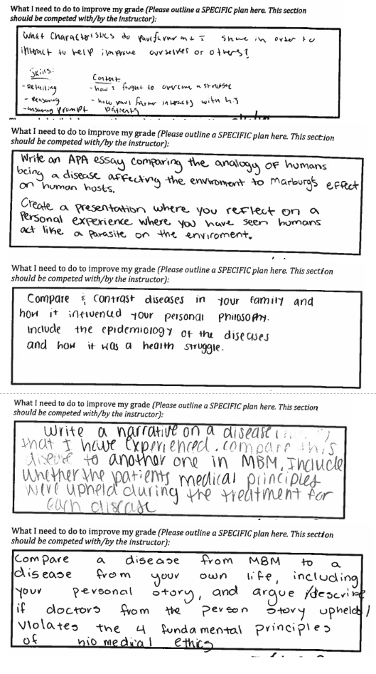 student-created assessment prompts