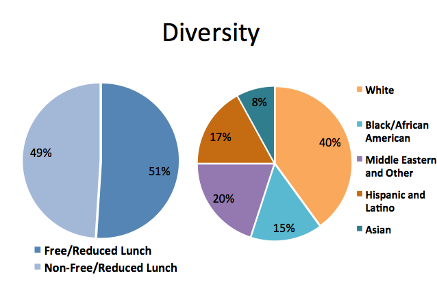 Valor student demographics