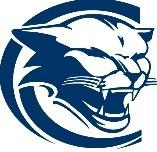 Chicago Academy logo