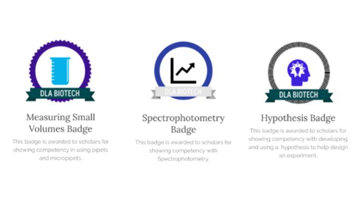 Del Lago Academy badges