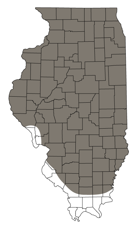 A map of Illinois counties showing the 1900 distribution of Greater Prairie-chickens.