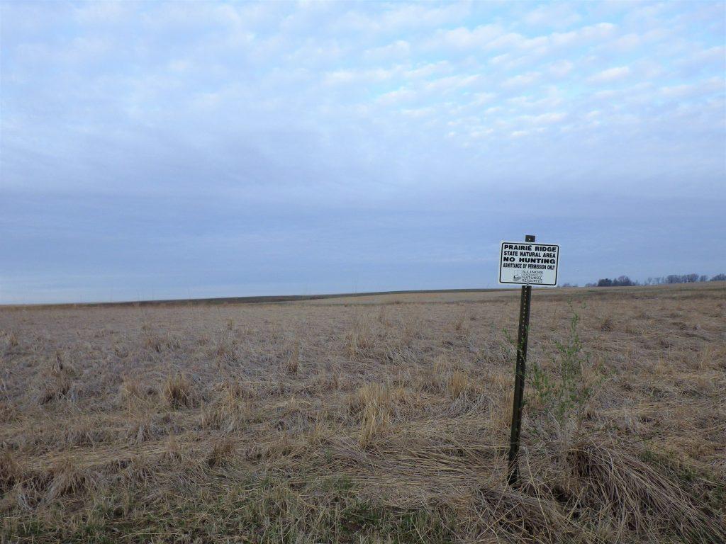 A prairie at sunrise. One view of Prairie Ridge State Natural Area.