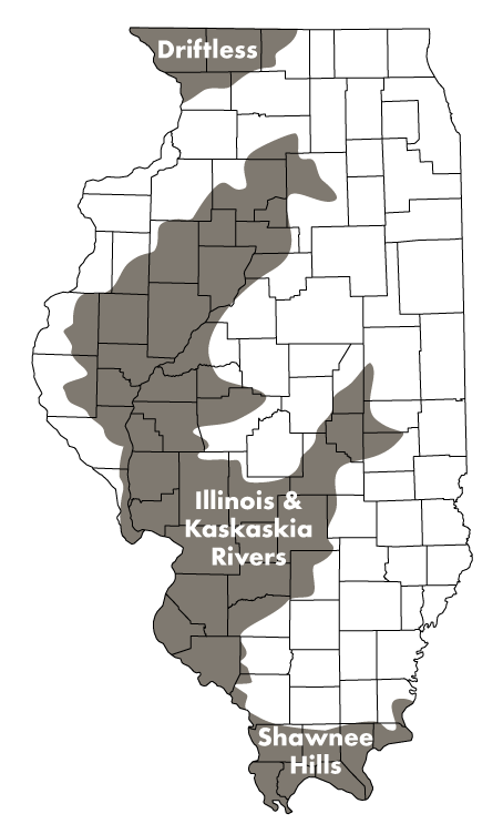 A map of Illinois indicating the Driftless area in northwest Illinois, the Illinois and Kaskaskia Rivers in west central Illinois, and Shawnee Hills in southern Illinois.