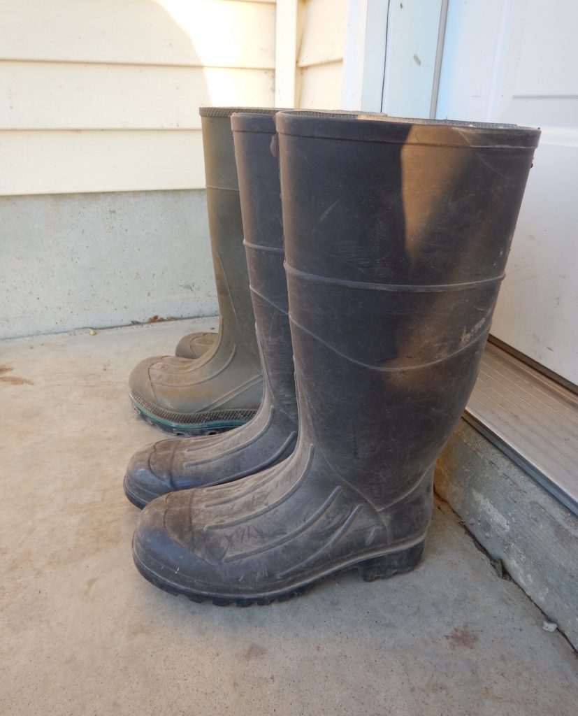 There are two pairs of brown rubber boots in a row. They are lined up against a doorway with a white exterior door in the background.