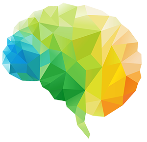 colorful brain science diagram