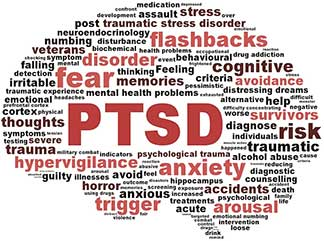 PTSD symptoms in the brain