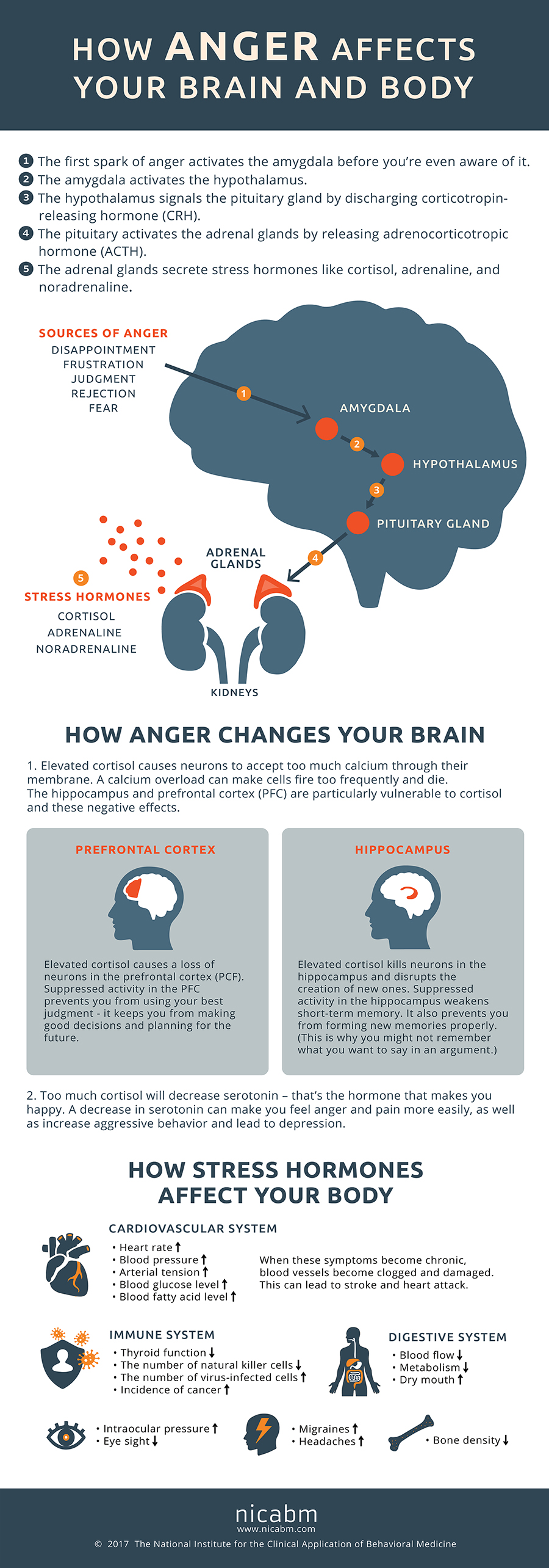 NICABM Anger Infographic - Controlling anger - Why anger is your biggest enemy