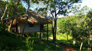 AER Eco Lodge Unit