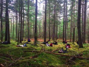 nicaragua yoga forest