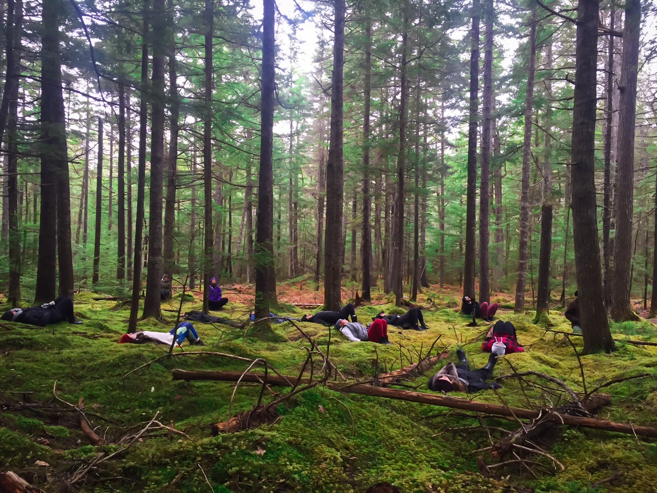 Shanti Hot Yoga 17-Day All-Inclusive Yoga Teacher Training JAN 20-FEB 26, 2018