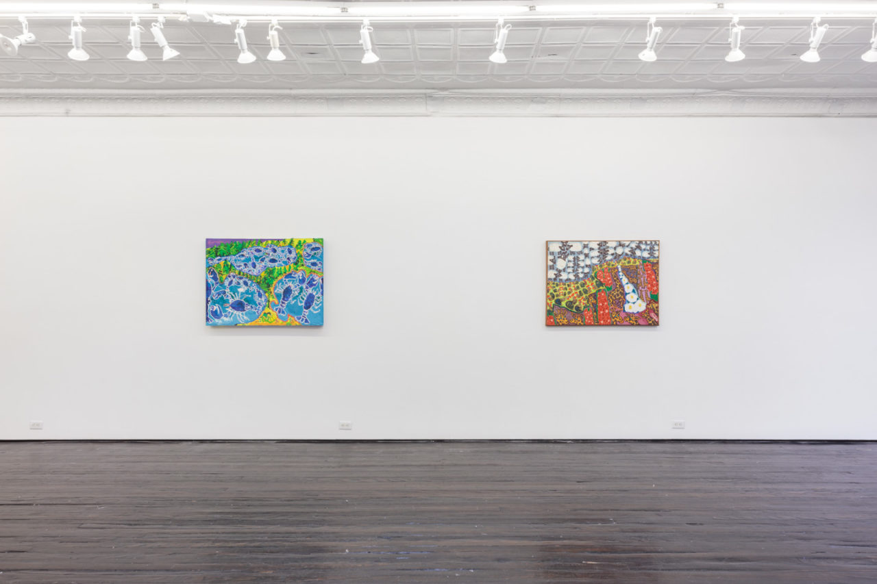 SEALabrate with Maija! | Installation view, Maija Peeples-Bright, SEALabrate with Maija!